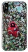 Cardinal Feb 2012 IPhone Case