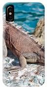 Caribbean Iguana IPhone Case