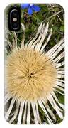 Carlina Acaulis And Gentiana Verna IPhone Case