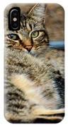 Cat Nap Interuption IPhone Case
