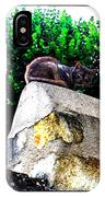 Cat On Medieval Wall IPhone Case