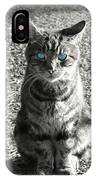 Cat With Blue Eyes IPhone Case