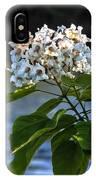 Catalpa Beauty IPhone Case