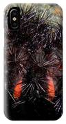 Caterpillar In All It's Beauty IPhone Case