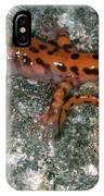 Cave Salamander IPhone Case