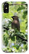 Cedar Waxwing Among Apple Blossoms IPhone Case
