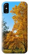 Changing Leaves IPhone Case