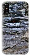 Chasing The Eternal Flame At Chestnut Ridge Park IPhone Case