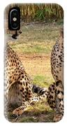 Cheetah Chat 1 IPhone Case