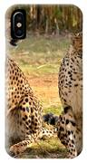 Cheetah Chat 3 IPhone Case