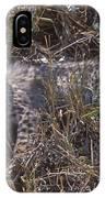Cheetah Kitten IPhone Case