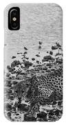 Cheetah Tip Toes For A Drink IPhone Case