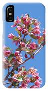 Cherry Blossom Branch IPhone Case