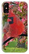 Cherry Blossom Cardinal  IPhone Case