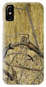 Chipmunk In The Sun IPhone Case