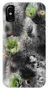 Cholla Blossoms IPhone Case