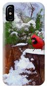 Christmas Guest IPhone Case
