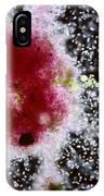Chromatium Sp. Bacteria IPhone Case