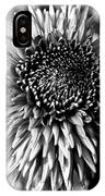 Chrysanthemum In Monochrome IPhone Case