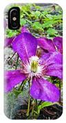Clematis Abby Aldrich Rockefeller Garden IPhone Case