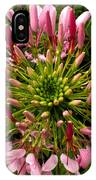 Cleome IPhone Case