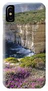 Cliffs Along Ocean With Wildflowers IPhone Case