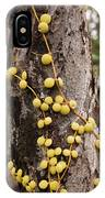 Climbing Plant On A Tree Trunk IPhone Case