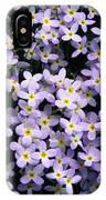 Close-up Of Bluet Flowers Houstonia IPhone Case