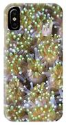 Close-up Of Open Coral Polyps, Papua IPhone Case