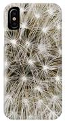 Close View Of A Dandelion Seed Head IPhone Case