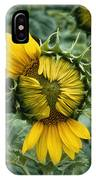 Close View Of A Sunflower Blossom IPhone Case