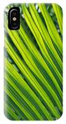 Close View Of Palm Fronds IPhone Case