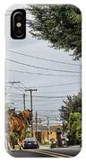 Closed On Sundays 2 - Amish Country IPhone Case