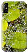 Closeup Of Morning Dew On Leaves IPhone Case