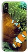 Clown Anemonefish IPhone Case