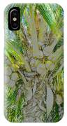 Coconut Palm IPhone Case