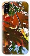 Colorado October IPhone Case