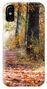 Colorful Autumn Landscape IPhone Case