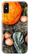 Colorful Fall Harvest IPhone Case
