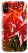Colorful Fall Tree Red Leaves Art Prints IPhone Case