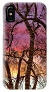 Colorful Silhouetted Trees 37 IPhone Case