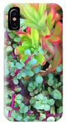 Colorful Succulent Plants For You IPhone Case
