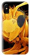 Coloured Sem Of A Wasp (vespa Sp.) In Flight IPhone Case