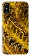 Commensal Shrimp IPhone Case