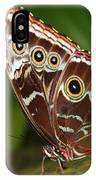 Common Blue Morpho IPhone Case