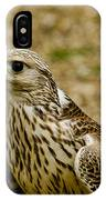 Common Female Kestrel IPhone Case