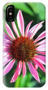 Cone Flower IPhone Case