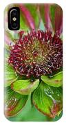 Confused Cone Flower IPhone Case