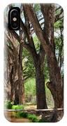 Cottonwood Desert Oasis - Utah IPhone Case
