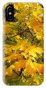 Country Color 10 IPhone Case